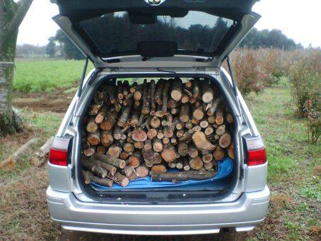マイカーのワゴン車に積んだ桜の薪